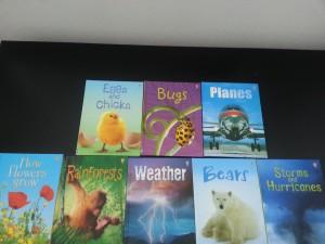 Usborne books1